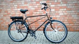 Raußen R10 E-bike| Rahmenhöhe 63 cm | braun | Ansmann Motor